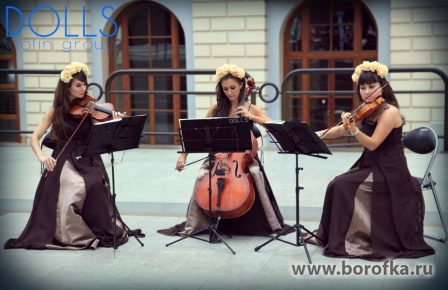 Музыканты Violin Group DOLLS